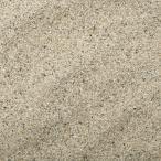 未洗浄 サンゴ砂 パウダー(#0) 1L 海水水槽用底砂