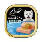 マース シーザー おいしいまぐろ 白身魚・野菜入り 100g ドッグフード シーザー 関東当日便