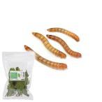 (生餌)ミルワーム 10カップ分 栄養強化セット 本州・四国限定