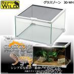 三晃商会 SANKO グラスゾーン 30WH 爬虫類 ケージ 飼育 関東当日便
