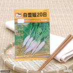 ゆうパケット対応 野菜の種 白雪姫20日大根 品番:1510 家庭菜園 同梱・代引き・着日指定不可