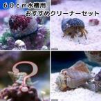 (海水魚 無脊椎)60cm水槽用 おすすめクリーナーセット コケ・底砂の掃除(1セット)