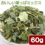 国産 おいしい葉っぱミックス 60g 小動物用のおやつ