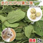 国産 またたびの葉 5g と実 虫エイ果 3 4個 無添加 無着色 猫用