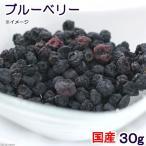 国産 ブルーベリー 30g 小動物用のおやつ ドライフルーツ 無添加 無着色