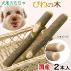 国産 びわの木 犬用 2本入 おもちゃ 無添加 無着色 小型犬 中型犬