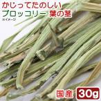 平成29年産 国産 かじってたのしい ブロッコリー葉の茎 30g 小動物用のおやつ 無添加 無着色 関東当日便