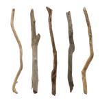 形状おまかせ 棒状流木 ロング 5本セット DIY素材 インテリア用 関東当日便