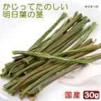 USAYAMA 国産 かじってたのしい 明日葉の茎 30g 小動物用のおやつ 無添加 無着色