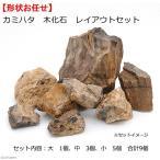 カミハタ 木化石 レイアウトセット 45〜75cm水槽向け 形状おまかせ