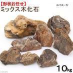 形状お任せ ミックス木化石 10kg 関東当日便