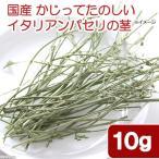 国産 かじってたのしい イタリアンパセリの茎 10g 小動物用のおやつ 無添加 無着色 関東当日便