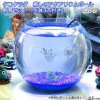 (クラゲ 海水魚)タコクラゲ 癒しのアクアリウムボール 飼育セット(生体3匹付き) 本州・四国限定
