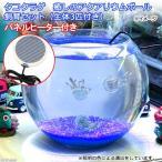 (クラゲ 海水魚)タコクラゲ 癒しのアクアリウムボール 飼育セット(生体3匹付き)パネルヒーター付き 本州・四国限定