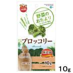マルカン 野菜のおたより ブロッコリー 10g 小動物 おやつ 関東当日便