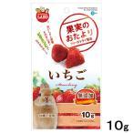 マルカン 果実のおたより いちご 10g 無添加 小動物 おやつ うさぎ 関東当日便
