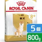 ロイヤルカナン 柴犬 中・高齢犬用 800g×5個 3182550866118 関東当日便