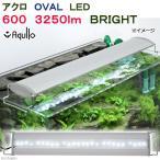 アクロ OVAL LED 600 3250lm BRIGHT Aqullo Series 60cm水槽用照明 沖縄別途送料 関東当日便