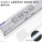 ニッソー LEDライト CAVE 900 ホワイト 同梱不可 沖縄別途送料 アクアリウムライト 関東当日便