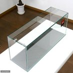 GEX グラステリア スリム600 (60×20×25)60cm水槽(単体) ジェックス お一人様1点限り