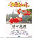 金魚伝承 第三十一号 書籍 金魚 関東当日便