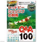 レッドビーシュリンプの飼育 Q&A100 関東当日便