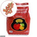 (観葉植物)エコバッグで育てる 簡単トマト栽培セット(トゥインクルミニトマト)(1セット) 家庭菜園