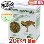 プロバグズ 真空生昆虫 スーパーワーム 1箱 20g 10袋入  PROBUGS ECO-FRESH SUPERWORM
