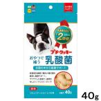 ハイペット プチ・クッキー 乳酸菌 40g
