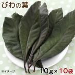 10袋セット 国産 びわの葉 10g×10袋 小動物用のおやつ 国産 無添加 無着色