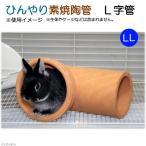 ショッピングひんやり ひんやり素焼陶管 L字管 LL 小動物用 ハウス トンネル 関東当日便