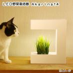 アウトレット品 オリンピア照明 LED野菜栽培器