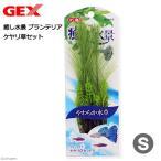 GEX プランテリア ケヤリ草 S 関東当日便