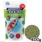 いきものジャーム 強さを育てる 鯉のエサ 400g 関東当日便