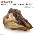 カミハタ アクアリウムロック 木化石 大 形状お任せ