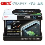 GEX グラステリア メダカ 上見 お一人様5点限り 関東当日便