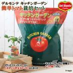 Yahoo!チャーム charm PayPayモール店(観葉植物)私の菜園 デルモンテ キッチンガーデン 簡単トマト栽培セット(ぜいたくトマトゴールド) 家庭菜園