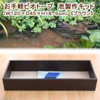 お手軽ビオトープ 池製作キット(W120×D45×H18.5cm) ブラウン 関東当日便