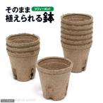 ジフィーポット(そのまま植えられる鉢) 丸型5.5cm(10個入) サカタのタネ 関東当日便