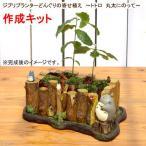 (観葉)ジブリプランターどんぐりの寄せ植え 〜トトロ 丸太にのって〜 作成キット