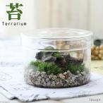 (観葉)苔Terrarium 小さなアルプス 説明書付 テラリウムキット 本州・四国限定