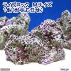 (海水魚)ライブロック Mサイズ(1個)(形状お任せ) 北海道・九州・沖縄航空便要保温