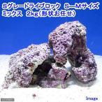(海水魚)Sグレードライブロック S-Mサイズミックス(2kg)(形状お任せ) 北海道・九州・沖縄航空便要保温