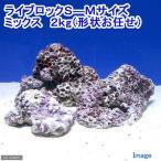 (海水魚)ライブロック S-Mサイズミックス(2kg)(形状お任せ) 北海道・九州・沖縄航空便要保温