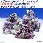 (海水魚)Sグレードライブロック SSサイズ お買得(1kg)(形状お任せ) 北海道・九州・沖縄航空便要保温