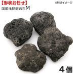国産浅間溶岩石M(4ヶ) 約10〜15cm 関東当日便