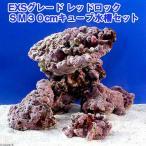 (海水魚)ライブロック EXSグレード レッドロック 30cmキューブ水槽セット(1セット)(形状お任せ) 北海道・九州・沖縄航空便要保温