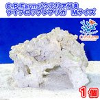 (海水魚)C.P.Farm バクテリア付きライブロックレプリカ Mサイズ 1個(形状お任せ)