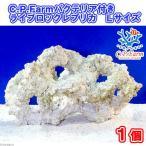 (海水魚)C.P.Farm バクテリア付きライブロックレプリカ Lサイズ 1個(形状お任せ) 北海道航空便要保温