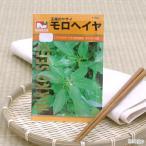 野菜の種 モロヘイヤ 品番:1164 家庭菜園 関東当日便